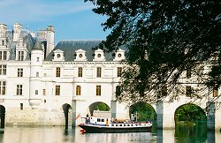 Nymphea under the Chateau Chenonceaux in the Upper Loire valley, France