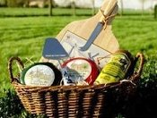 Win some fine Dutch Gouda cheese in our February competition