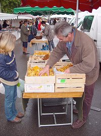 Selecting the local girolles mushrooms at the market - this grower is only at the   market for three weeks of our season each year - he literally picks the mushrooms in the morning then brings them to the market to sell -   fabulous