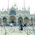 Venice gets tough with the Pigeons